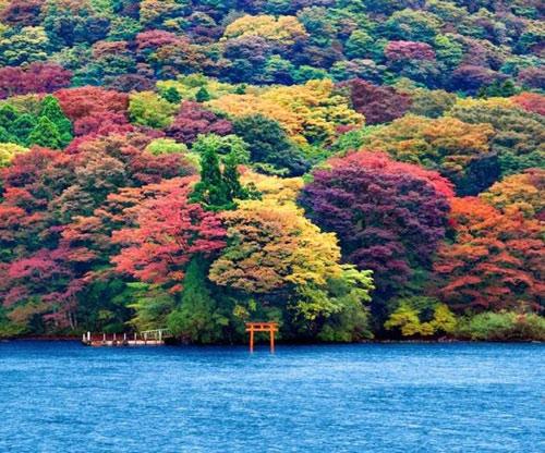 """Những """"thiên đường"""" mùa thu đẹp nhất thế giới - 4"""