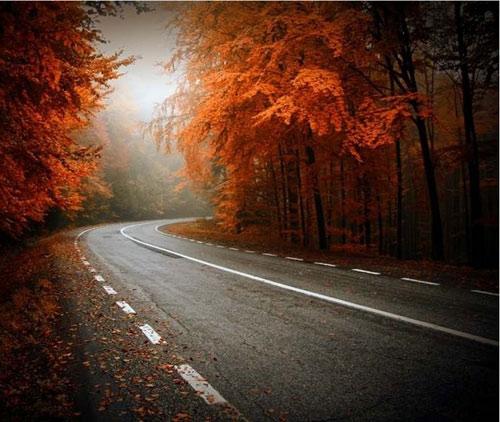 """Những """"thiên đường"""" mùa thu đẹp nhất thế giới - 2"""