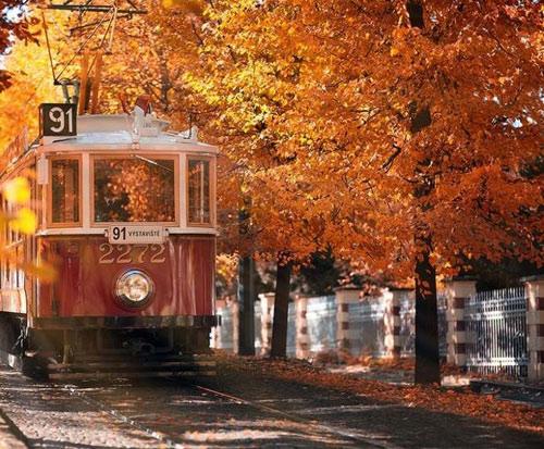 """Những """"thiên đường"""" mùa thu đẹp nhất thế giới - 11"""