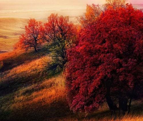 """Những """"thiên đường"""" mùa thu đẹp nhất thế giới - 12"""