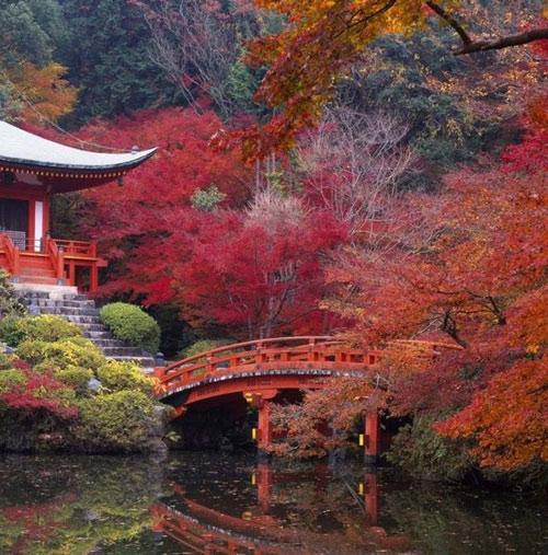 """Những """"thiên đường"""" mùa thu đẹp nhất thế giới - 13"""