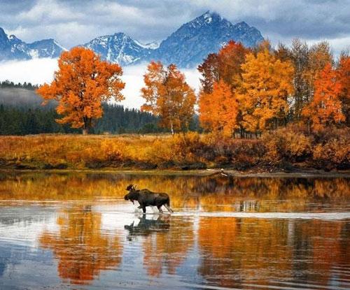 """Những """"thiên đường"""" mùa thu đẹp nhất thế giới - 14"""