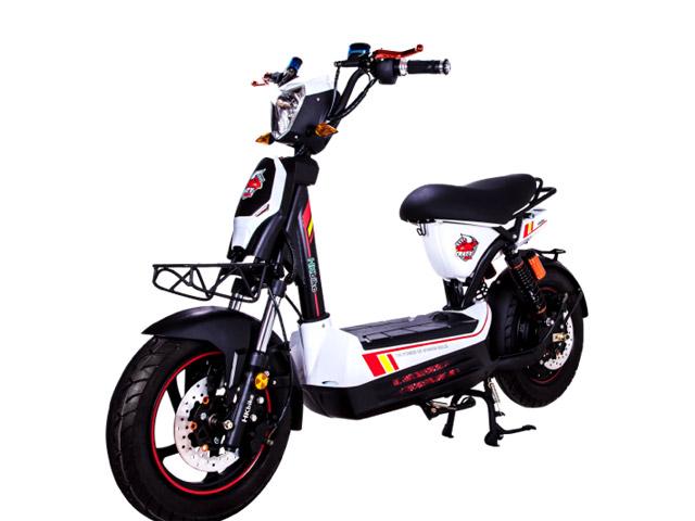 Sức mạnh đáng nể của xe điện HKbike Crazy Bull - 4