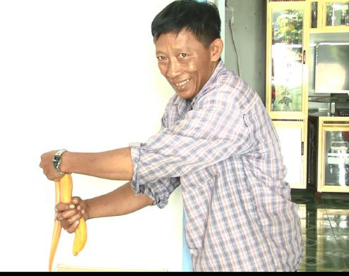 Nông dân miền Tây bắt được lươn vàng, 50 triệu chưa bán - 2