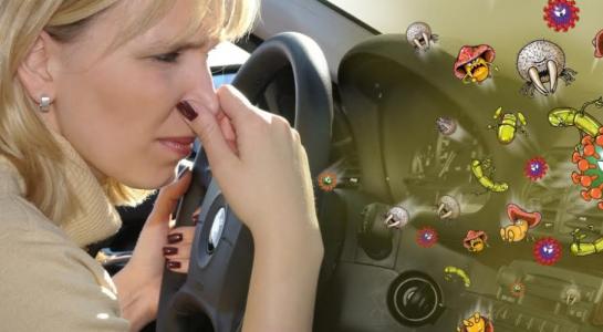 Xe hơi cũng là nguồn lây nhiễm bệnh - 1