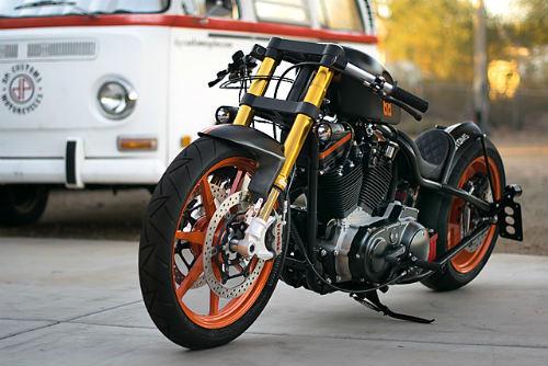 Mê mẩn xế độ 2001 Harley Davidson Sportster-DP Customs - 6