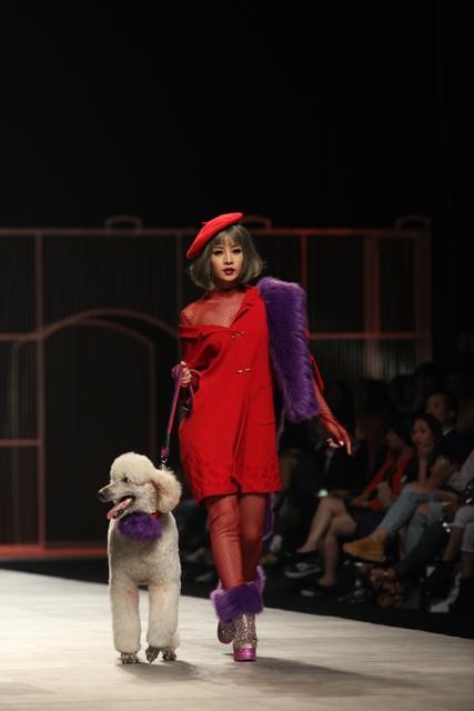 Chi Pu hờ hững vai trần dắt chó 1000 USD lên sàn catwalk - 1