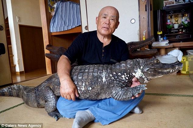 Bầu bạn, ôm ấp cá sấu suốt 34 năm, bỏ bê cả vợ - 1