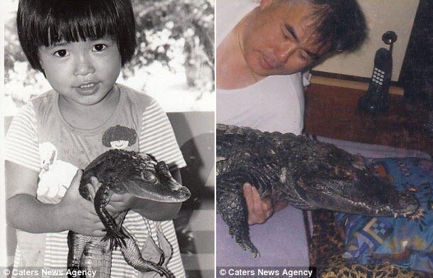Bầu bạn, ôm ấp cá sấu suốt 34 năm, bỏ bê cả vợ - 3