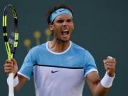 Thể thao - Tin thể thao HOT 5/11: Nadal sẵn sàng chết để thêm Grand Slam