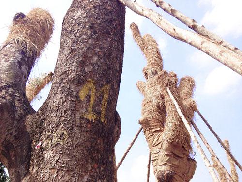 """Cận cảnh khu vườn nghỉ dưỡng của các """"cụ cây"""" Kim Mã - 9"""