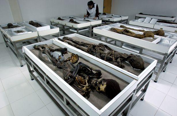 """Nỗ lực """"cứu"""" 300 xác ướp cổ nhất thế giới - 2"""