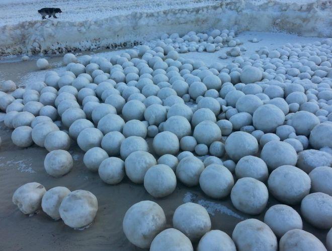 Hàng nghìn bóng tuyết khổng lồ kéo nhau vào bờ biển Nga - 1