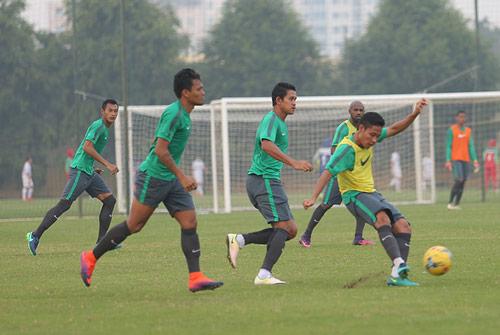 HLV Alfred Riedl bình luận về ĐT Việt Nam trước AFF Cup - 6
