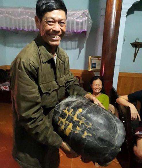 """""""Cụ"""" rùa 16 kg được thả về tự nhiên - 1"""
