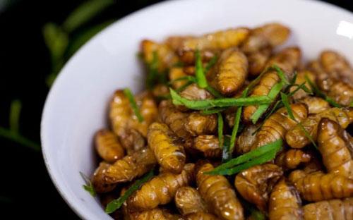 5 lưu ý khi ăn nhộng tằm để không ngộ độc - 3