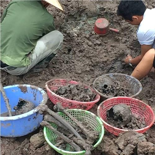 Tin mới nhất vụ hài cốt chôn trộm ở Thái Bình - 2