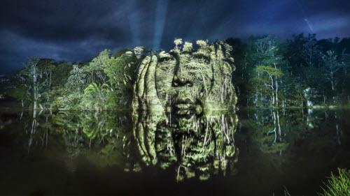 """Kinh ngạc bộ tranh """"vẽ"""" trên cây trong rừng Amazon - 1"""