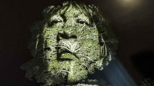 """Kinh ngạc bộ tranh """"vẽ"""" trên cây trong rừng Amazon - 7"""