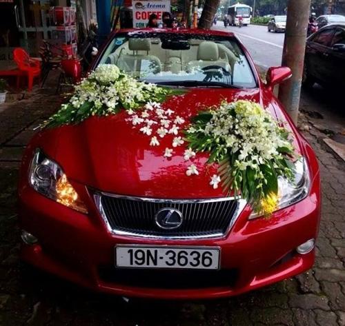 Diện kiến dàn xe sang đón dâu tại Phú Thọ - 5