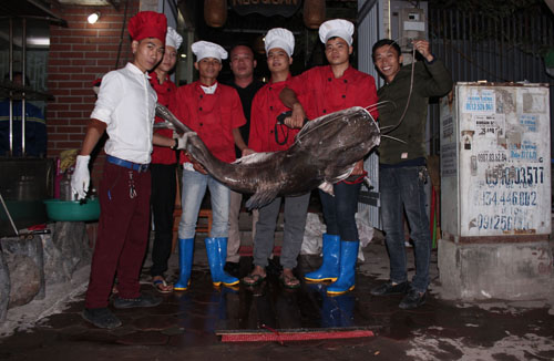 """Thêm một """"thủy quái"""" sông Mê Kông xuất hiện ở Hà Nội - 1"""