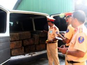 An ninh Xã hội - Xe khách ngụy trang xe cấp cứu chở đầy gỗ lậu