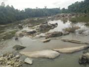 Tin tức trong ngày - Kinh hãi phát hiện thi thể nam thanh niên trôi trên sông