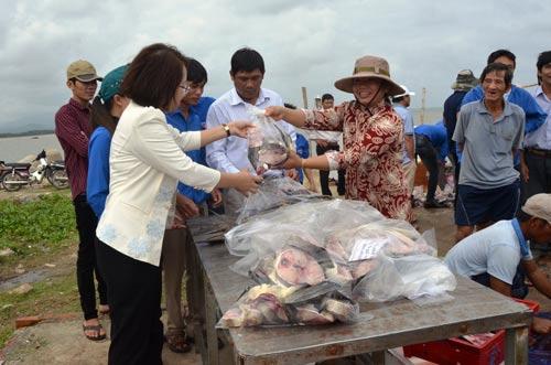Quảng Ngãi: UBND huyện thu mua cá bớp giúp nông dân - 1