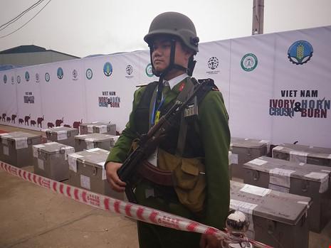 Lần đầu tiên Việt Nam tiêu hủy hơn 2.000 kg ngà voi - 1
