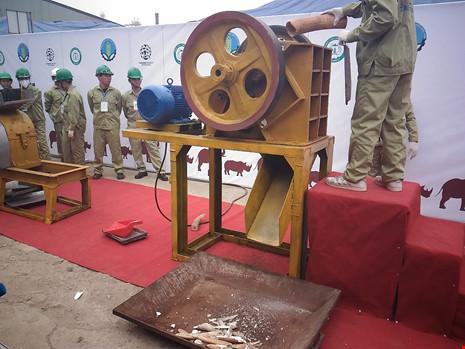 Lần đầu tiên Việt Nam tiêu hủy hơn 2.000 kg ngà voi - 6