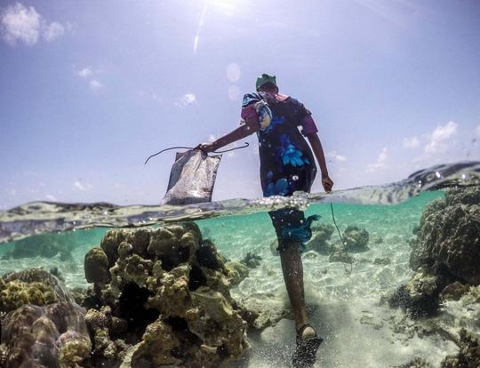 Những người săn bạch tuộc ở Zanzibar - 1