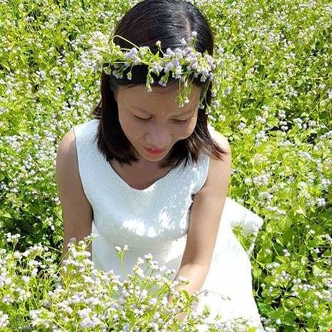 Đồng hoa dại đẹp lạ giữa lòng thành phố Tây Ninh - 8