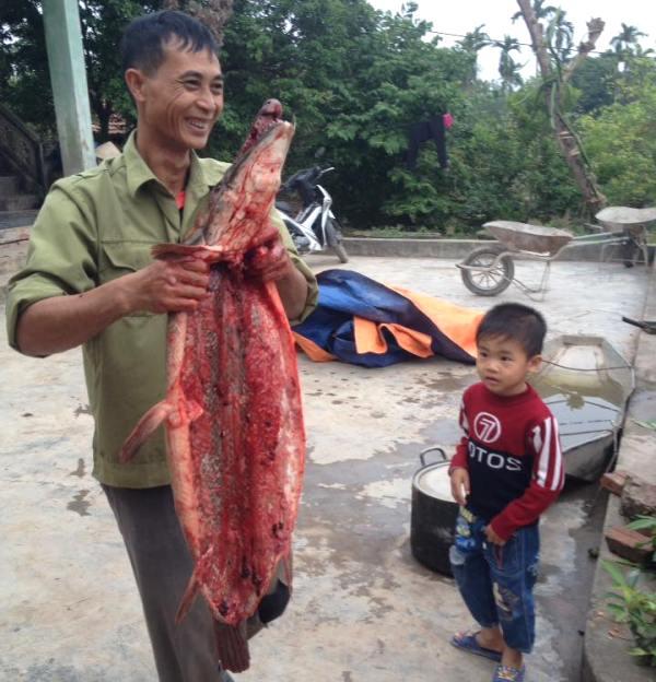 """Hải Dương: Người dân bắt được """"cá lạ"""" giống cá sấu - 2"""