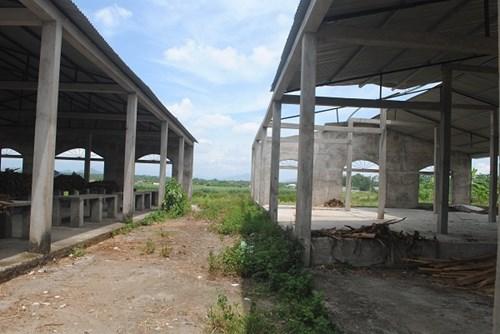 Trung tâm thương mại 14 tỷ thành chỗ chứa… rơm, thả bò - 3