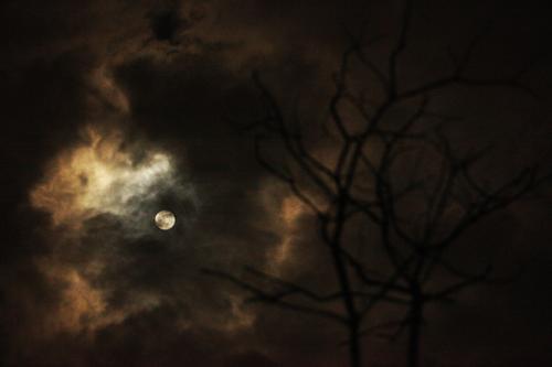 Chiêm ngưỡng siêu trăng lớn nhất trong 68 năm tại Việt Nam - 16