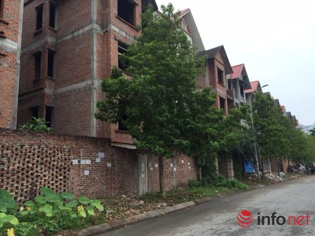 """HN: Biệt thự """"bỏ hoang"""" mất giá, rao bán dưới 40 triệu đồng/m2 - 2"""