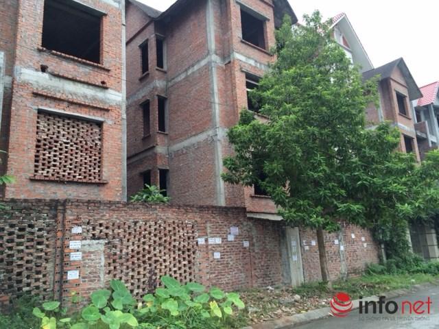 """HN: Biệt thự """"bỏ hoang"""" mất giá, rao bán dưới 40 triệu đồng/m2 - 3"""