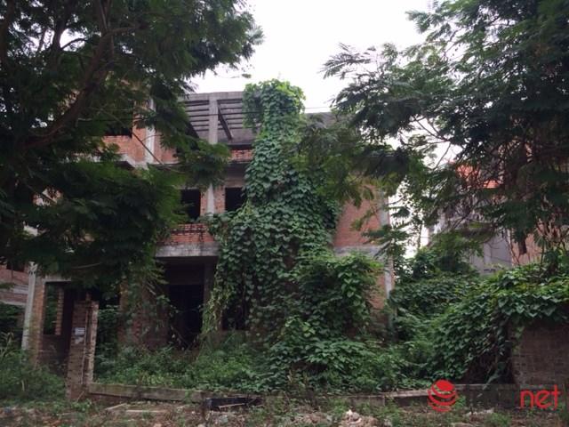 """HN: Biệt thự """"bỏ hoang"""" mất giá, rao bán dưới 40 triệu đồng/m2 - 7"""
