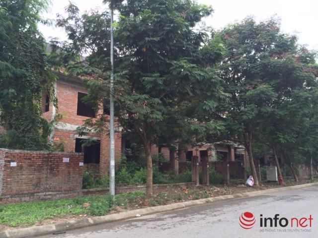 """HN: Biệt thự """"bỏ hoang"""" mất giá, rao bán dưới 40 triệu đồng/m2 - 8"""