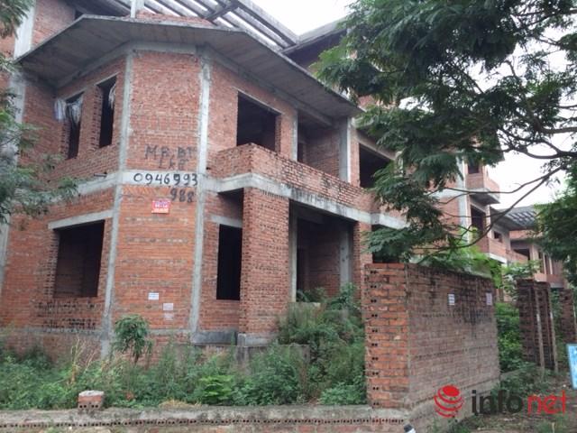 """HN: Biệt thự """"bỏ hoang"""" mất giá, rao bán dưới 40 triệu đồng/m2 - 9"""