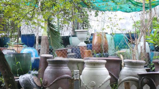 Thai phụ nhiễm Zika tại TP HCM đã sinh con - 2