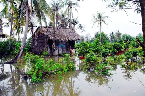 Vỡ bờ bao ven sông Sài Gòn, nhiều người dân trắng tay - 2