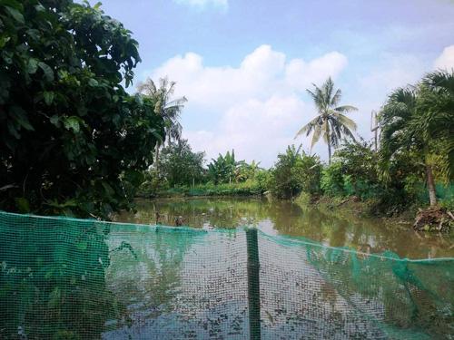 Vỡ bờ bao ven sông Sài Gòn, nhiều người dân trắng tay - 4