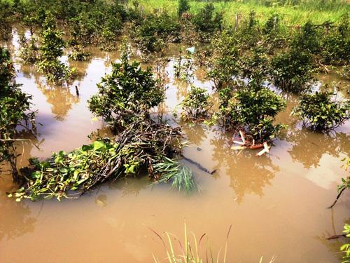Vỡ bờ bao ven sông Sài Gòn, nhiều người dân trắng tay - 5