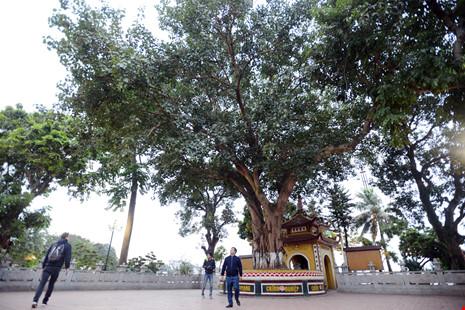Vẻ cổ kính của ngôi chùa đẹp nhất thế giới ở Việt Nam - 7