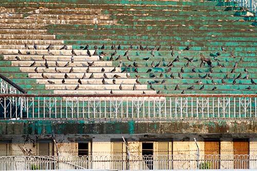 ĐT Việt Nam tập trên sân đầy chim hót véo von ở Myanmar - 2