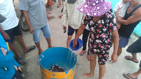 Ngư dân thả lưới bắt được đồi mồi cực kỳ quý hiếm - 3