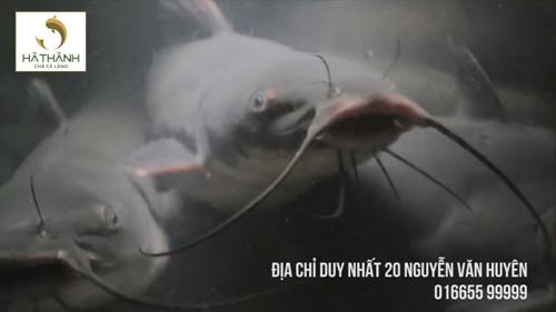Chả cá Hà Thành giảm giá 45% tri ân ngày 20/11 - 3