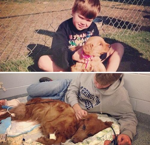 Cảm động hình ảnh chú chó và chủ cùng nhau lớn lên - 4