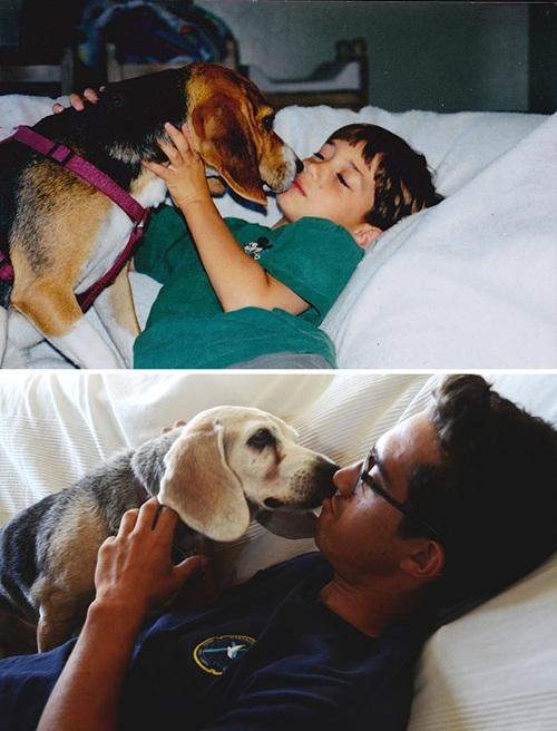 Cảm động hình ảnh chú chó và chủ cùng nhau lớn lên - 7